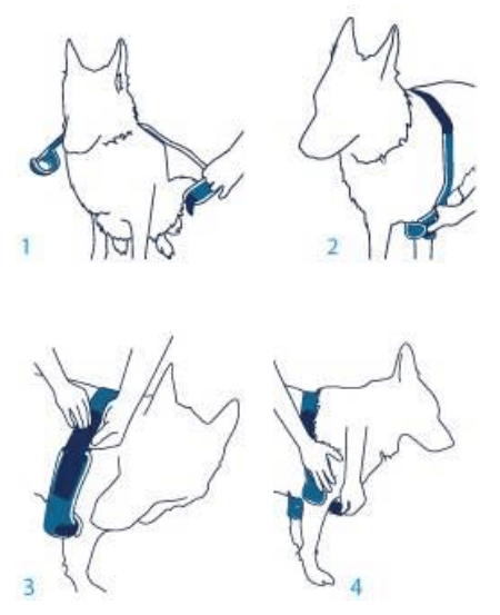 Balto-BT-SOFT-PLUS-Fitting-Instructions